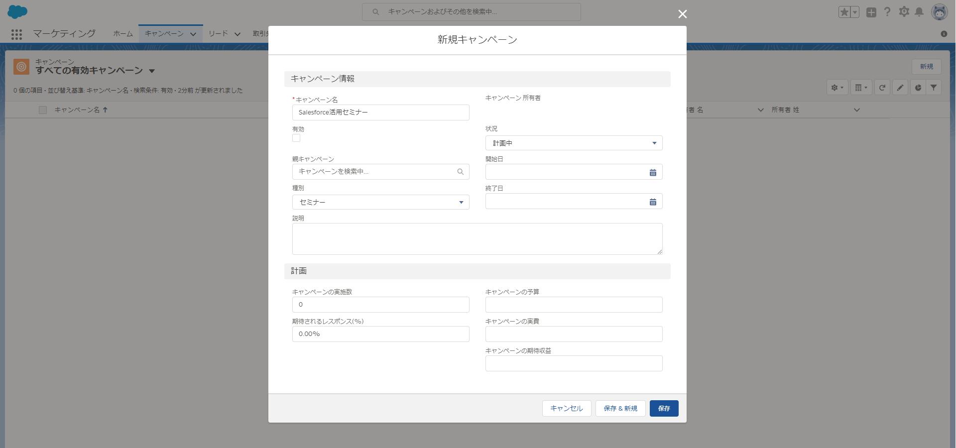 Salesforce_Campaign